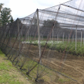 Diamond Hole Knotted HDPE Anti Bird/ Pigeon Net
